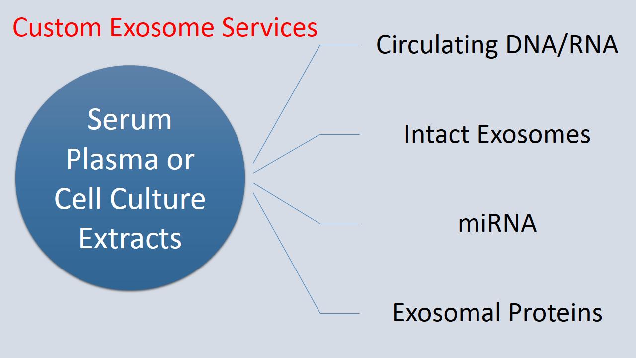 Exosome Ser Pic